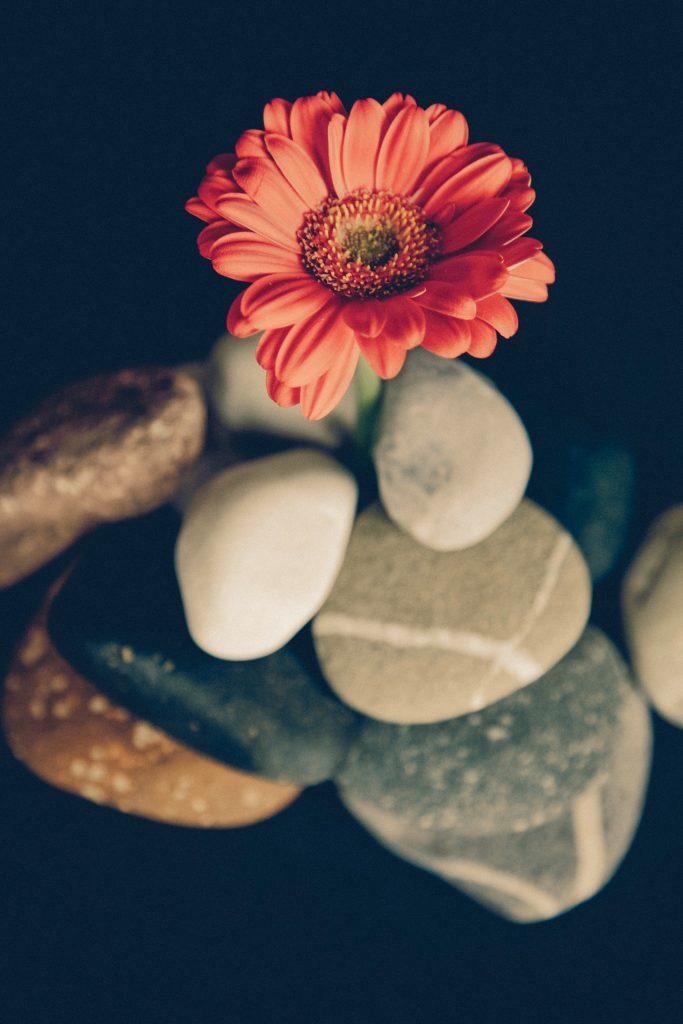 Massage - Spring Hudvård